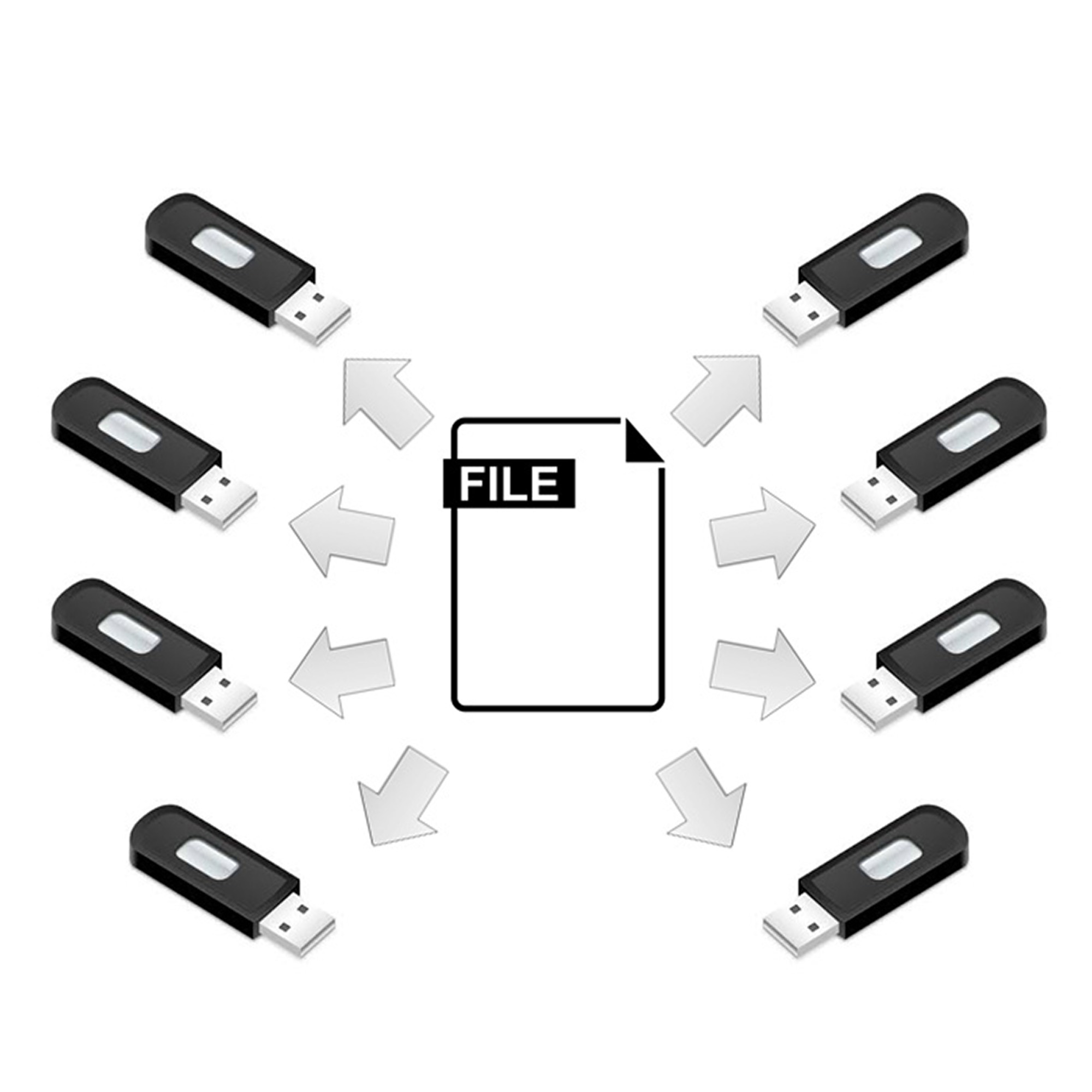 Order this service if you wish to get your USB drives preloaded with your own selected files. An excellent service if you wish to order USB memories that you directly can distribute to customers or internal staff with preloaded files.